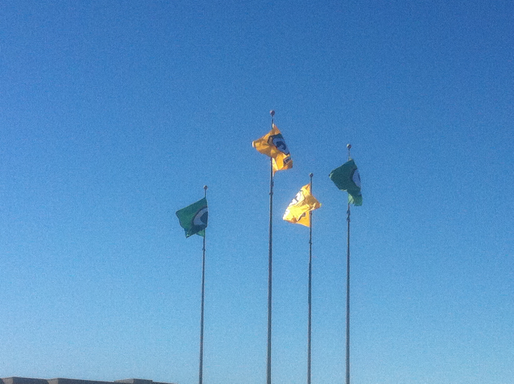<div class='photo-info'><span class='counter'>44 of 48</span>Posted Feb 12, 2011</div><div class='photo-title'>Flags outside the team Hotel</div><div class='photo-body'>Las Colinas, Texas</div>