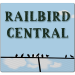 Railbird Central: Let It Snow!